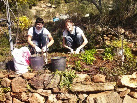Volunteering in Andalucia wwoof