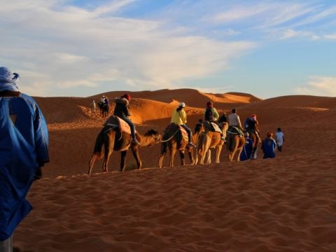 trip_adventure_camel_caravan_sahara_golden_sands_travelling_morocco