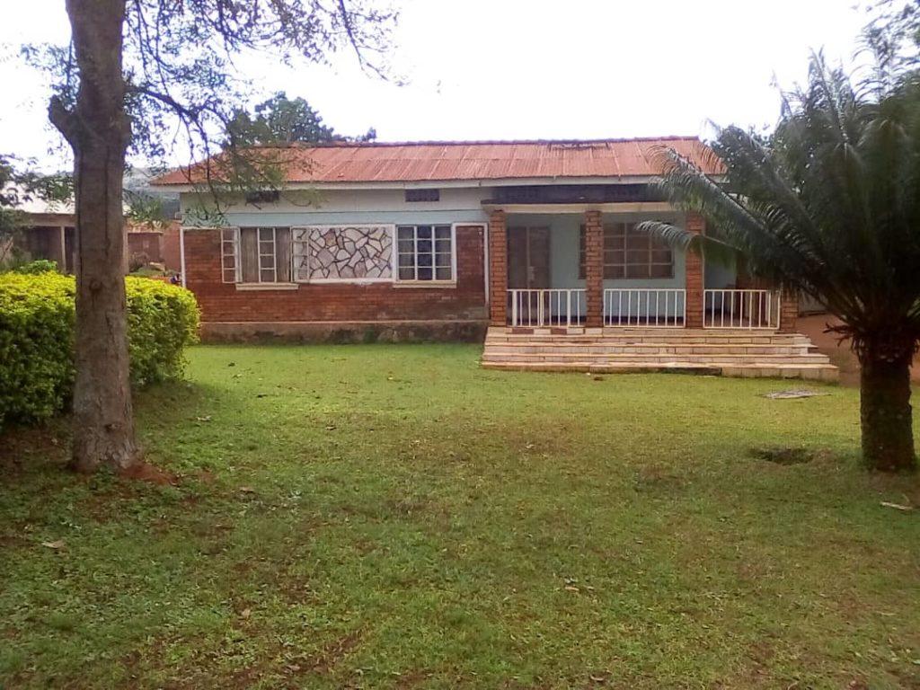 volunteering in Uganda