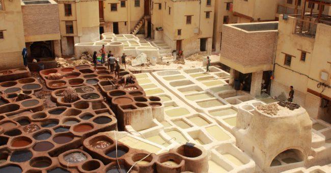 volunteering in Fez