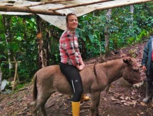 Volunteering in Ecuador - volunteer in Ecuador, coffee farm, farm, wwoof, coffee