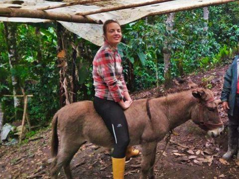 Volunteering in Ecuador - volunteer in Ecuador, coffee farm, farm, wwoof, coffee