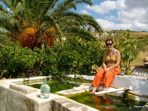 free workaway, free wwoof, free wwoofing, host in Sicily, volunteer exchange, au pair, wwoof, wwoofing