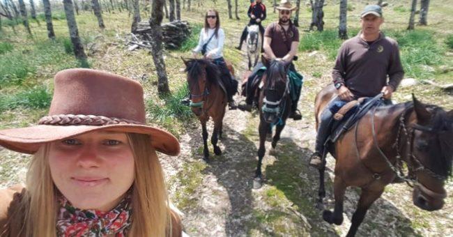 learn about natural horsemanship, natural horsemanship