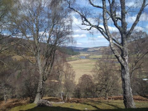 food and accommodation, scotland landscape, workaway, helpx, wwoof, volunteering, exchange, free hospitality,
