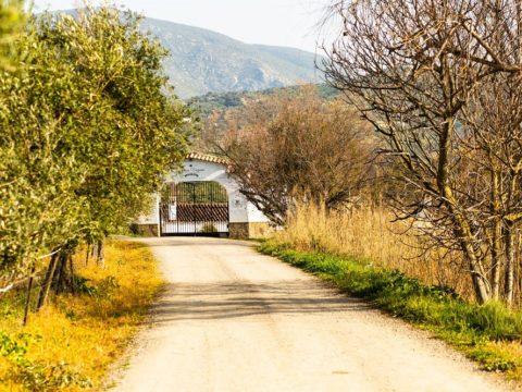 exchange, workaway, organic farm, vegan, vegetarian, guesthouse, volunteering, free list