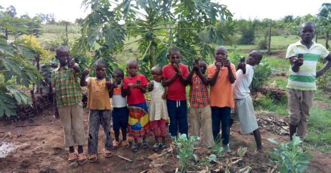 organic farm kenya, community, eco village, permaculture