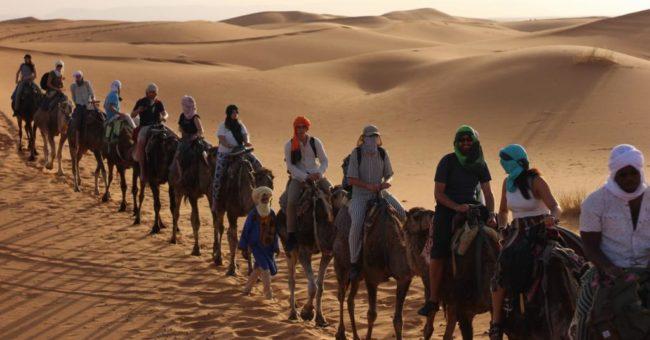british language academy, exchange, cultural exchange, hospitality exchange, Morocco, free workaway, helpx