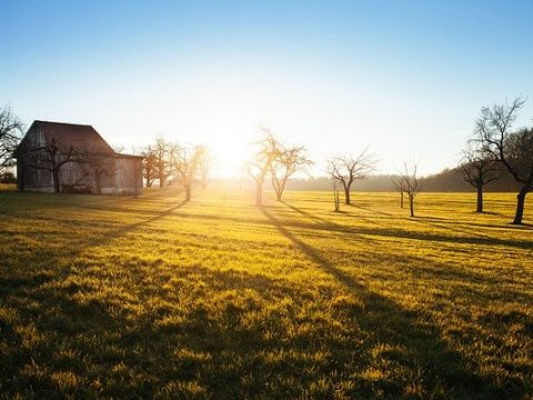 farm, cabin, farming, camp, campsite, camping, countryside, cabin, wood, agriculture, house, pixa, px pex, rural areas, rural, countryside
