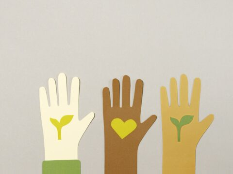 volunteering, voluntouring, voluntourism, volunteer projects, programs, abroad, exchange, food and accommodation, pocket money, esc, evs, erasmus plus, european soldarity corps, pix, pex, pixa, ecology, raise your hand, help, charity